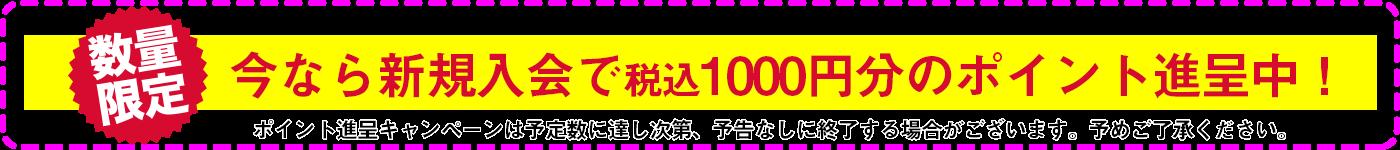 新規入会で1,000円分のポイントがもらえる