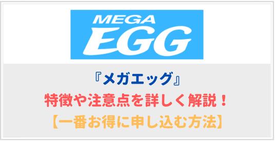 メガエッグの特徴や注意点を詳しく解説【月額料金が安い!】